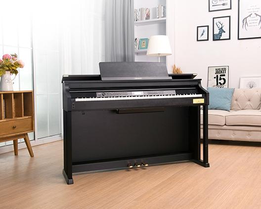 卡西欧电子乐器AP-700