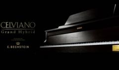 卡西欧官方商城 在维也纳——与CELVIANO Grand Hybrid电钢琴相遇