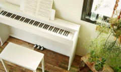 卡西欧官方商城 细说卡西欧电子乐器各系列的区别